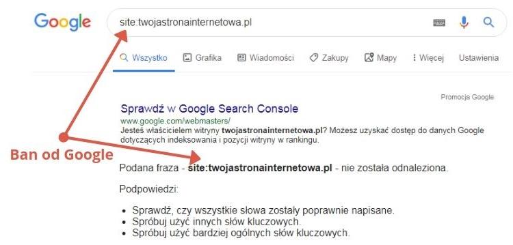 ban google serp