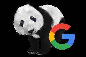blokowanie indeksowania google panda