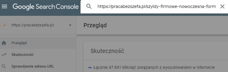 dodaję adres do narzędzia sprawdzanie adresu URL
